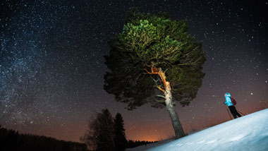 SNOWSHOE UNDER THE STARS