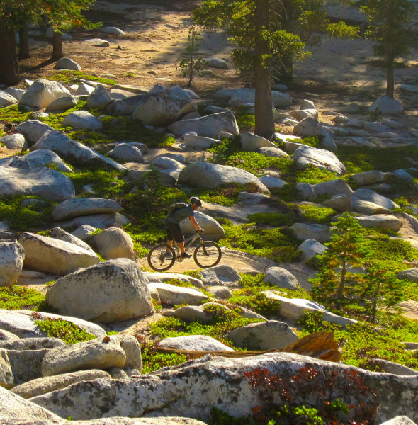 Tahoe mountain bike – cycle tours downhill MTB